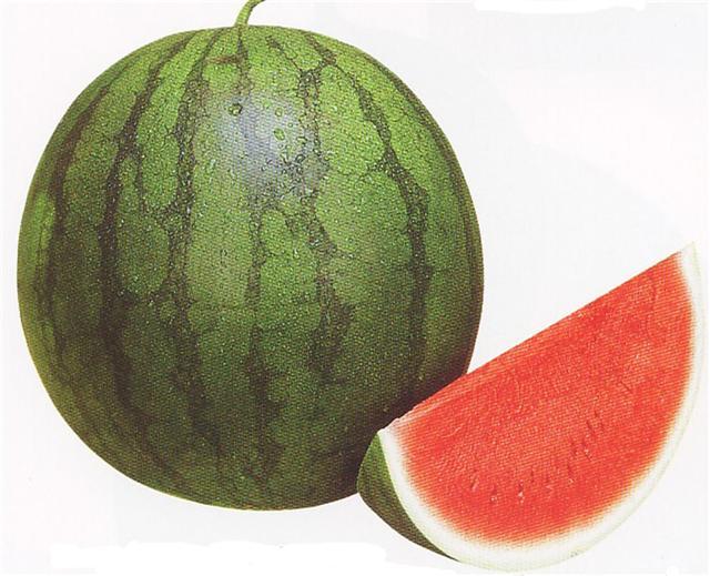 kemarin sore saya membeli buah semangka semangka yang dipajang hanya